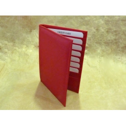 Portadocumentos piel (tarjetas y pasaportes)