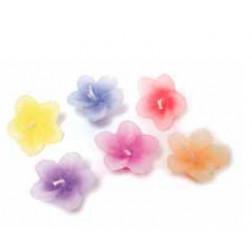 Set 6 velitas flores