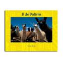 B de Bolivia